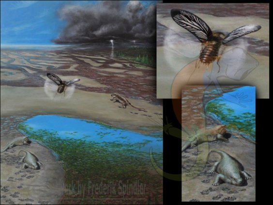 Carboniferous flood plane