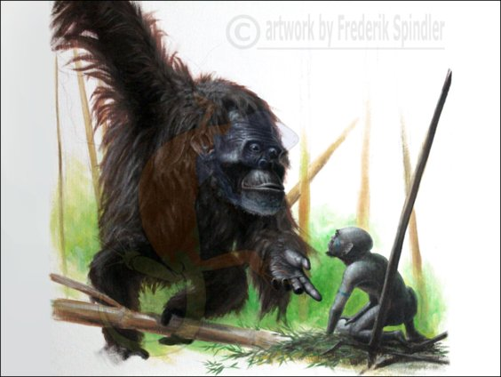 'Sméagol and the Kong'