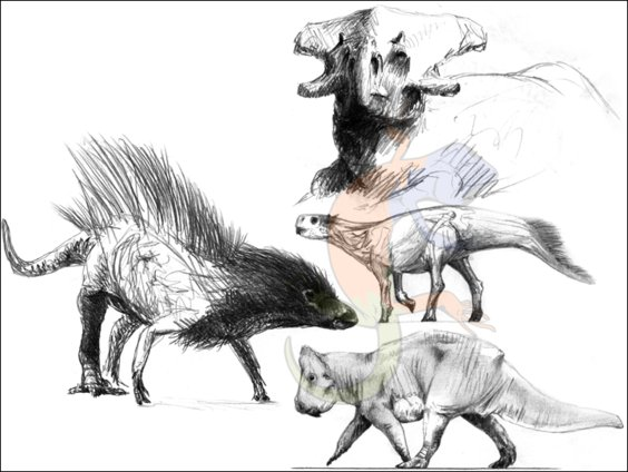 early ceratopsian evolution