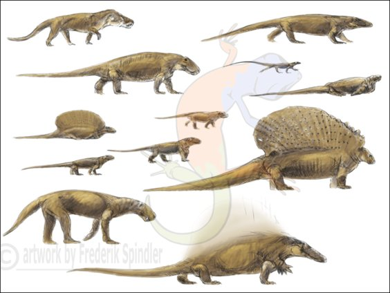 early synapsids